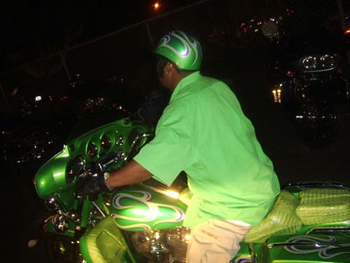 green gator bike.jpg
